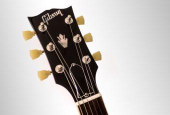 新たに施行されたサイテスによるローズウッドへの規制とギブソンギター